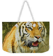 Weekender Tote Bag featuring the photograph Tiger Stare by Sandi OReilly