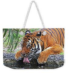 Thirsty Tiger Weekender Tote Bag
