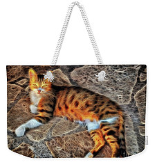 Weekender Tote Bag featuring the photograph Tiger Tiger Burning Bright by Leigh Kemp