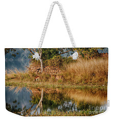Tigerland Weekender Tote Bag by Pravine Chester