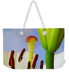 Weekender Tote Bag featuring the photograph Tigerlily Close-up by Ana Maria Edulescu