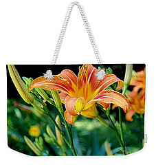 Weekender Tote Bag featuring the photograph Tigers In The Garden by Nancy Kane Chapman