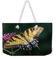 Weekender Tote Bag featuring the photograph Tigress And Verbena by Byron Varvarigos
