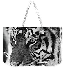 Tigress In Black And White Weekender Tote Bag by Kandy Hurley