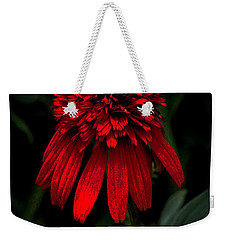 Weekender Tote Bag featuring the photograph Tiki Torch by Judy Wolinsky