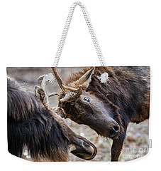 Weekender Tote Bag featuring the photograph Tilt by Andrea Silies
