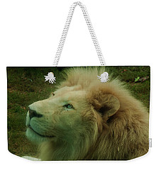 Weekender Tote Bag featuring the photograph Timbavati White Lion by Chris Flees