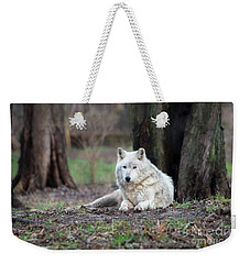 Weekender Tote Bag featuring the photograph Timber Wolf by Andrea Silies