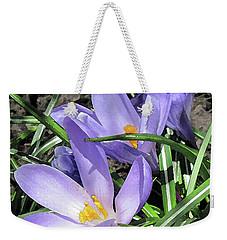 Time For Crocuses Weekender Tote Bag