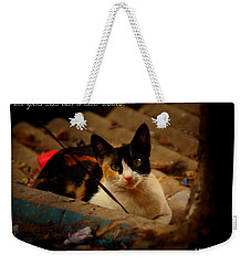 Time Spent With Cats. Weekender Tote Bag