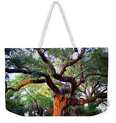 Time To Climb Weekender Tote Bag