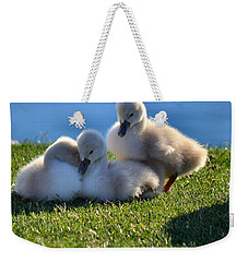 Time To Snuggle Weekender Tote Bag by Deb Halloran