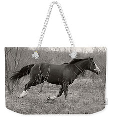Timeless And Hopeful Horse  Weekender Tote Bag