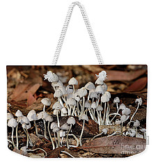 Weekender Tote Bag featuring the photograph Tiny Corrugated Fungi By Kaye Menner by Kaye Menner