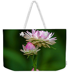 Weekender Tote Bag featuring the photograph Tiny Dahlias Green Aura by Byron Varvarigos