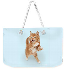 Tiny Tiger Weekender Tote Bag