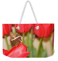 Tip Toe Through The Tulips Weekender Tote Bag by Living Color Photography Lorraine Lynch