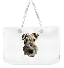 Weekender Tote Bag featuring the photograph Tipper The Fox Terrier by Charles Kraus