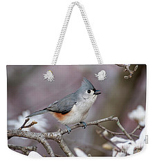 Weekender Tote Bag featuring the photograph Titmouse Song - D010023 by Daniel Dempster