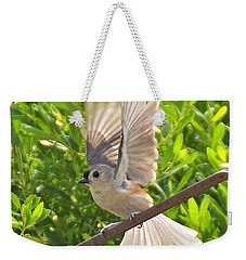 Titmouse Takeoff Weekender Tote Bag