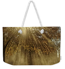 To Catch A Ray Of Sunlight Weekender Tote Bag