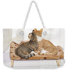 Weekender Tote Bag featuring the photograph  Sisters by Carol Wisniewski