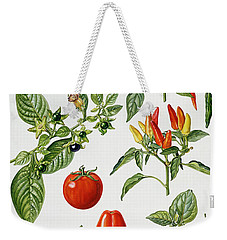 Tomatoes And Related Vegetables Weekender Tote Bag by Elizabeth Rice