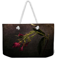 Weekender Tote Bag featuring the photograph Toning Down by Randi Grace Nilsberg