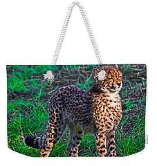 Too Cute Weekender Tote Bag