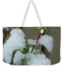 Too Soon Winter - Yellow Rose Weekender Tote Bag