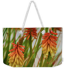 Torch Lily At The Beach Weekender Tote Bag by Sandi OReilly