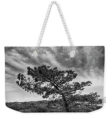 Torrey Pine Weekender Tote Bag by Hugh Smith