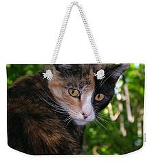 Tortie Weekender Tote Bag