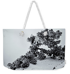 Weekender Tote Bag featuring the photograph Tortured Juniper by Alan Vance Ley