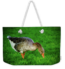 Toulouse Goose  Weekender Tote Bag