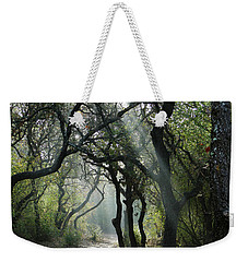 Trail Of Light Weekender Tote Bag