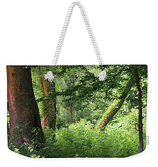 Tranquility Weekender Tote Bag by Roena King