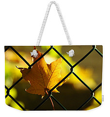 Trapped Weekender Tote Bag by Betty-Anne McDonald
