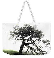 Weekender Tote Bag featuring the photograph Tree by Alex Grichenko