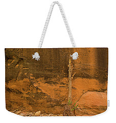 Tree And Sandstone Weekender Tote Bag