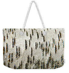 Weekender Tote Bag featuring the photograph Tree Bark Abstract by Christina Rollo