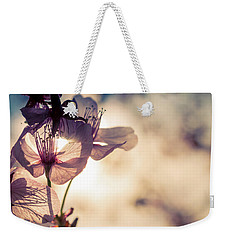 Tree Blossoms Backlit By The Afternoon Sun Weekender Tote Bag