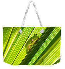Tree Frog And Palm Frond Weekender Tote Bag by Kenneth Albin
