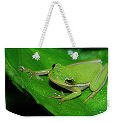 Tree Frog On Hibiscus Leaf Weekender Tote Bag by DigiArt Diaries by Vicky B Fuller