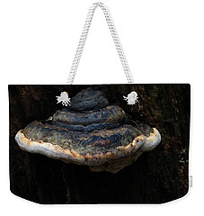 Weekender Tote Bag featuring the photograph Tree Fungus by Tikvah's Hope