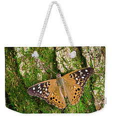 Weekender Tote Bag featuring the photograph Tree Hugger by Bill Pevlor