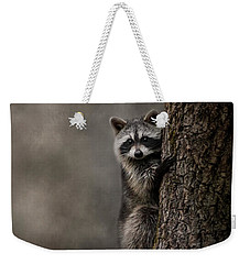 Tree Hugger Raccoon Art Weekender Tote Bag by Jai Johnson