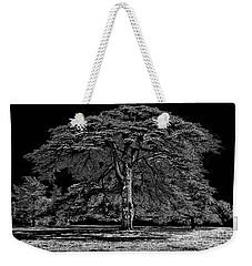 Tree In England Weekender Tote Bag by Walt Foegelle