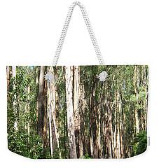 Tree Lined Mountain Road Weekender Tote Bag