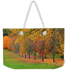 Tree Lined Path With Fall Foliage Weekender Tote Bag
